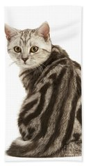 British Shorthair Cat Hand Towel