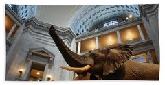 Bull Elephant In Natural History Rotunda Hand Towel
