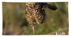 Burrowing Owl Photograph Hand Towel by Meg Rousher
