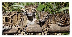 Clouded Leopards Bath Towel