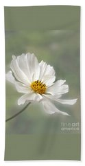 Cosmos Flower In White Hand Towel