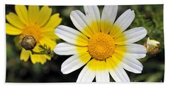 Crown Daisy Flower Hand Towel by George Atsametakis