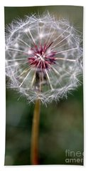 Hand Towel featuring the photograph Dandelion Seed Head by Henrik Lehnerer
