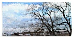 Bath Towel featuring the photograph Erie Shore In Winter by John Freidenberg