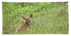 Hand Towel featuring the photograph Fawn by Jeannette Hunt