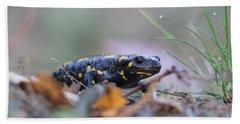 Fire Salamander - Salamandra Salamandra Hand Towel