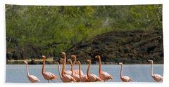 Greater Flamingos Bath Towel