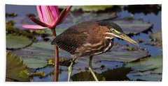 Green Heron Photo Hand Towel by Meg Rousher