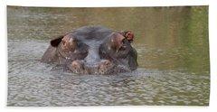 Hippopotamus Hippopotamus Amphibius Hand Towel