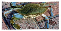 Bath Towel featuring the photograph Hudson River Crab by Lilliana Mendez