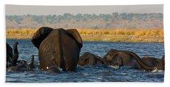 Bath Towel featuring the photograph Kalahari Elephants Crossing Chobe River by Amanda Stadther