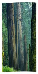 Northwest Forest    Hand Towel by Mary Lee Dereske