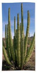 Organ Pipe Cactus Natl Monument Bath Towel