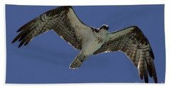 Hand Towel featuring the photograph Osprey In Flight Photo by Meg Rousher