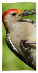 Red Bellied Woodpecker Hand Towel