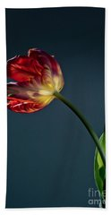 Red Tulip Hand Towel