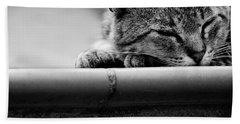 Hand Towel featuring the photograph Sleeping by Laura Melis
