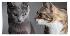 Two Cats Hand Towel