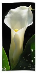 Zantedeschia Named Little Jimmy Hand Towel