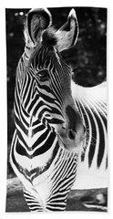 Zebra Portrait Hand Towel