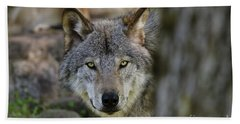Timber Wolf Pictures Hand Towel