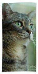American Shorthair Cat Profile Hand Towel
