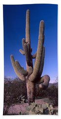 Low Angle View Of A Saguaro Cactus Bath Towel