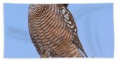 Northern Hawk Owl Bath Towel