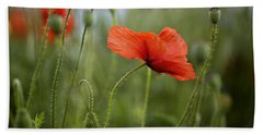 Red Poppy Flowers Hand Towel