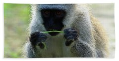 Vervet Monkey Bath Towel