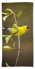 American Goldfinch Hand Towel