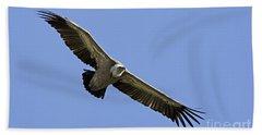 Griffon Vulture Gyps Fulvus Hand Towel