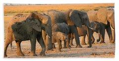Bath Towel featuring the photograph Kalahari Elephants by Amanda Stadther