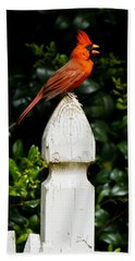 Male Cardinal Hand Towel