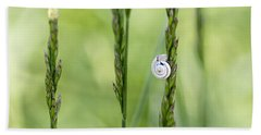 Snail On Grass Hand Towel