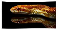 Bath Towel featuring the photograph Snake by Gunnar Orn Arnason