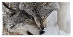 Timber Wolf Pictures Hand Towel by Wolves Only