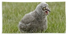 Bath Towel featuring the photograph Baby Snowy Owl by JT Lewis