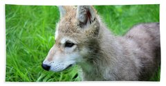 Gray Wolf Pup Bath Towel