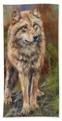 Grey Wolf Hand Towel by David Stribbling