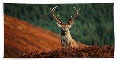 Red Deer Stag Hand Towel