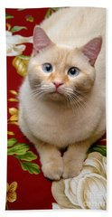 Flame Point Siamese Cat Hand Towel