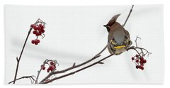Bohemian Waxwings Eating Rowan Berries Bath Towel