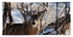 A Buck In The Bush Bath Towel