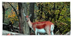 A Deer Look Bath Towel