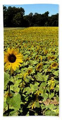 Bath Towel featuring the digital art A Field Of Sunflowers by Eva Kaufman