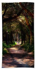 A Forest Path -dungeness Spit - Sequim Washington Hand Towel
