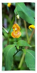 Hand Towel featuring the photograph A Fragile Flower by Chalet Roome-Rigdon