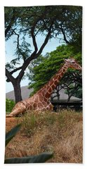 A Giraffe Rests In Honolulu Hand Towel