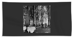 A Group Of People Eating Lunch Under Trees Hand Towel